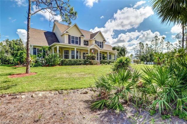 10341 Morningside Ln, Bonita Springs, FL 34135 (MLS #219010852) :: RE/MAX DREAM