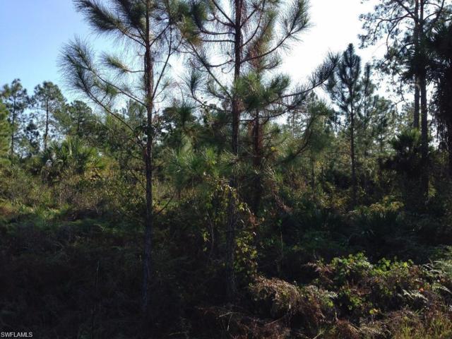 1110 Everglades Blvd N, Naples, FL 34120 (MLS #219013352) :: RE/MAX Realty Group