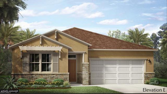 16701 Siesta Drum Way, Bonita Springs, FL 34135 (MLS #219022094) :: RE/MAX Realty Group