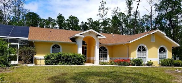 4071 2nd Ave SE, Naples, FL 34117 (MLS #219022931) :: RE/MAX Realty Group
