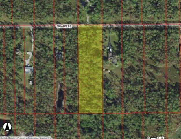 50 Ave NE, Naples, FL 34120 (MLS #219023060) :: #1 Real Estate Services