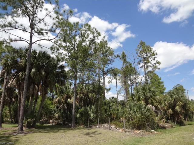 Address Not Published, Naples, FL 34120 (MLS #219023271) :: #1 Real Estate Services