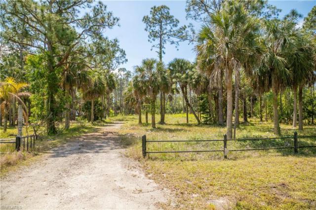 5748 Bur Oaks Ln, Naples, FL 34119 (MLS #219023568) :: RE/MAX Radiance