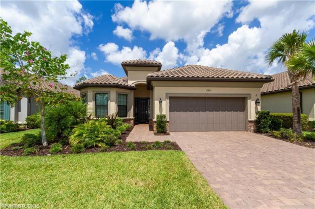 8851 Vaccaro Ct, Naples, FL 34119 (MLS #219034083) :: Clausen Properties, Inc.