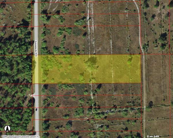 Everglades Blvd N, Naples, FL 34120 (MLS #219051263) :: RE/MAX Radiance