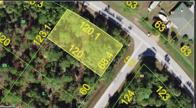 12177 Ripple Dr, Punta Gorda, FL 33955 (MLS #219051655) :: Kris Asquith's Diamond Coastal Group