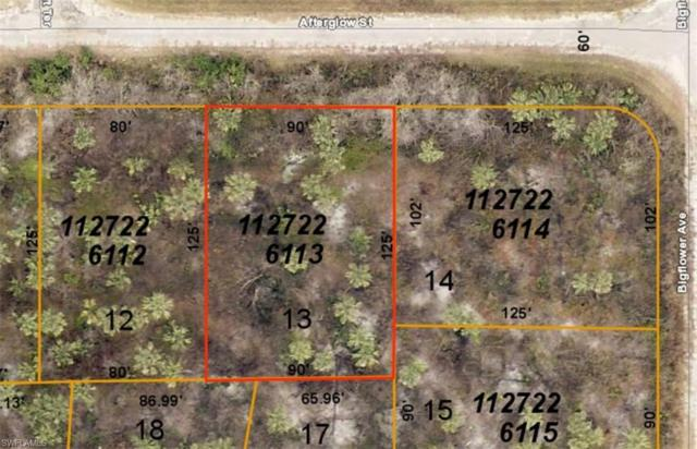 Afterglow St, North Port, FL 34288 (MLS #219052109) :: Sand Dollar Group