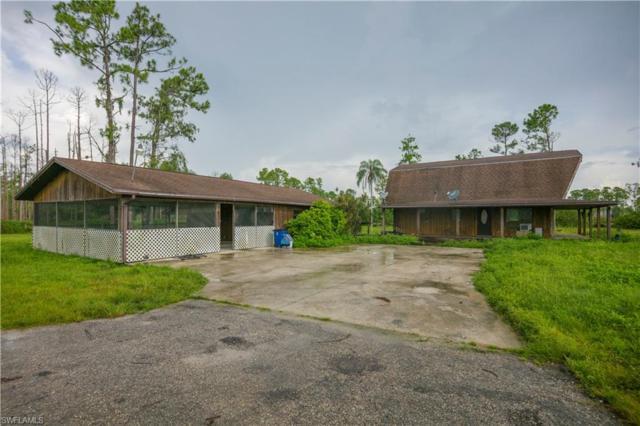 20430 Six Ls Farm Rd, Estero, FL 33928 (MLS #219053000) :: Sand Dollar Group