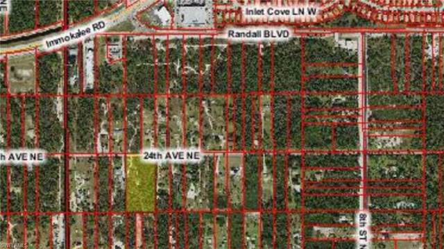 * 24th Ave NE, Naples, FL 34120 (#219055703) :: Equity Realty