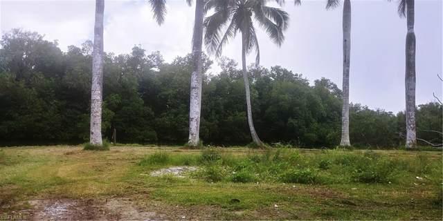 2 Plantation Pky, Everglades City, FL 34139 (MLS #219059914) :: The Naples Beach And Homes Team/MVP Realty
