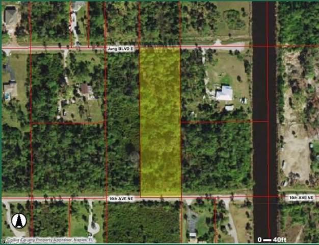 Jung Blvd E, Naples, FL 34120 (#219060804) :: The Dellatorè Real Estate Group