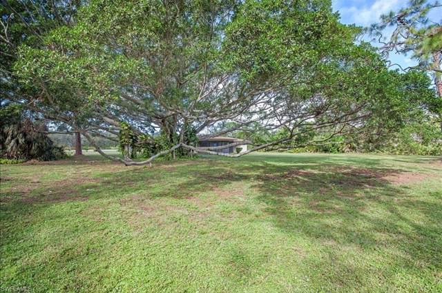 6616 Trail Blvd, Naples, FL 34108 (MLS #219061451) :: The Naples Beach And Homes Team/MVP Realty