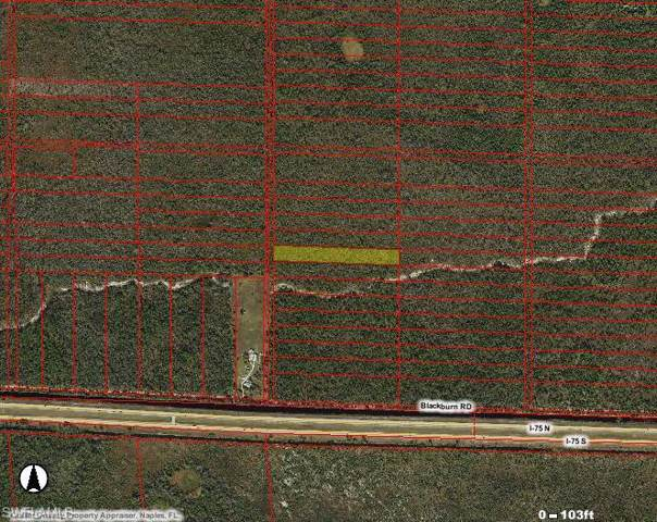 Off Of White Lake Blvd, Naples, FL 34117 (MLS #219069219) :: Clausen Properties, Inc.
