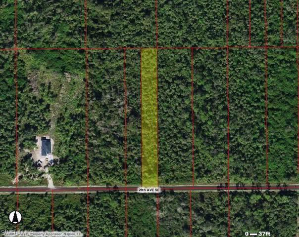 28 Ave SE, Naples, FL 34117 (#219073601) :: The Dellatorè Real Estate Group