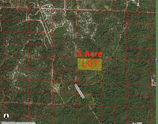 Woodland Grade Rd, Naples, FL 34117 (#219075506) :: Jason Schiering, PA