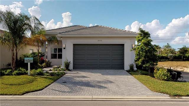 28502 Capraia Dr, Bonita Springs, FL 34135 (#219079859) :: The Dellatorè Real Estate Group