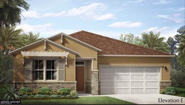 16704 Siesta Drum Way, Bonita Springs, FL 34135 (MLS #219080157) :: Palm Paradise Real Estate