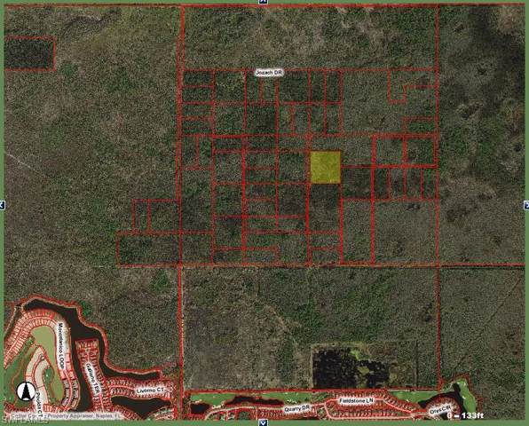 North of 846 Address Not Published, Naples, FL 34120 (#220000858) :: The Dellatorè Real Estate Group