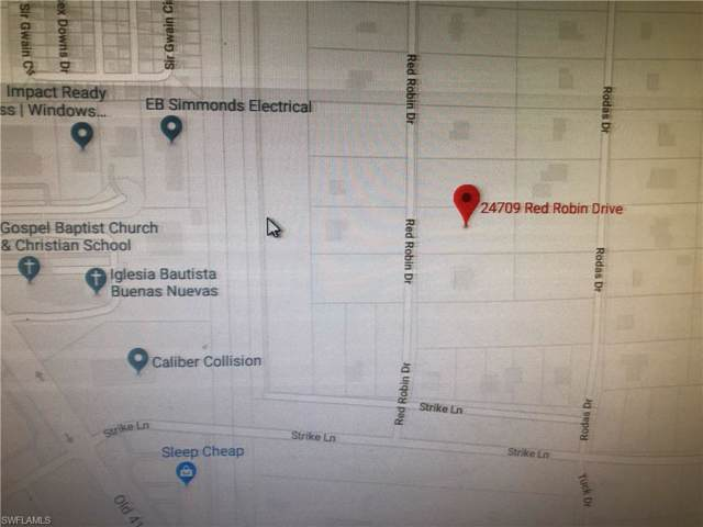 24709 Red Robin Dr, Bonita Springs, FL 34135 (#220001428) :: The Dellatorè Real Estate Group