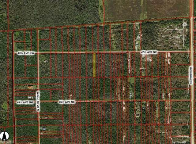 47th Ave NE, Naples, FL 34120 (#220013657) :: Caine Premier Properties