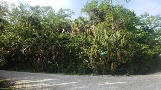 Keri Island Rd, Naples, FL 34120 (MLS #220014320) :: Kris Asquith's Diamond Coastal Group