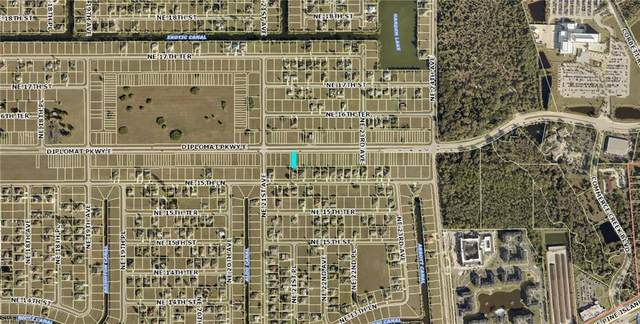 2122 Diplomat Pky E, Cape Coral, FL 33909 (MLS #220015848) :: Domain Realty