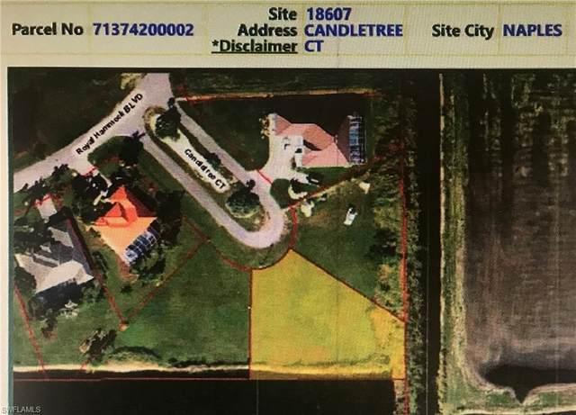 18607 Candletree Ct, Naples, FL 34114 (#220016916) :: Caine Premier Properties