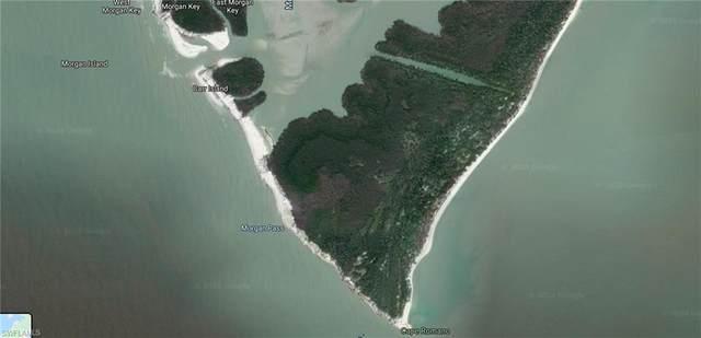 Cape Romano, Marco Island, FL 34145 (MLS #220022727) :: The Keller Group