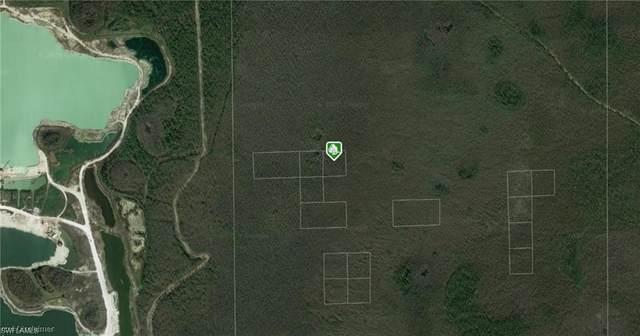 Access Undetermined, Bonita Springs, FL 34135 (#220023238) :: The Dellatorè Real Estate Group