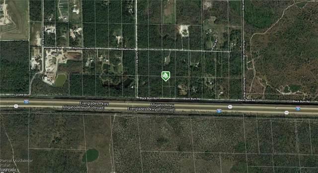 Blackburn Rd, Naples, FL 34117 (MLS #220024287) :: Dalton Wade Real Estate Group