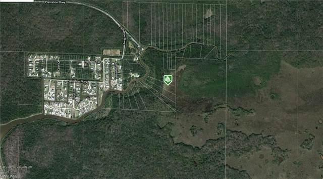 Plantation Pky, Everglades City, FL 34139 (MLS #220025044) :: Florida Homestar Team