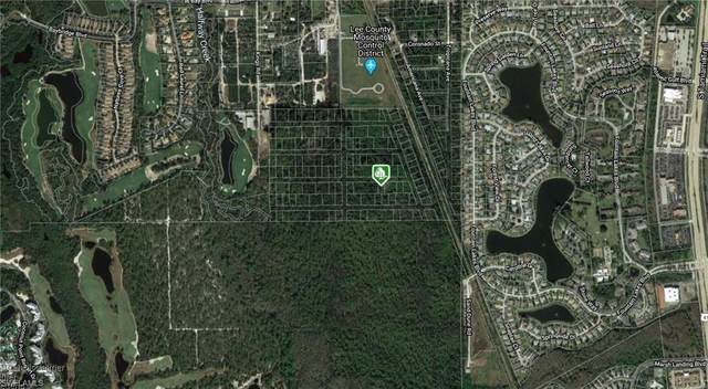 Carmela Rocco Ave, Estero, FL 33928 (MLS #220025583) :: Florida Homestar Team