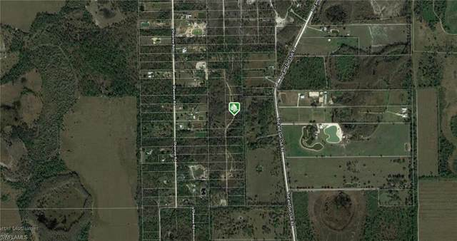 Vista Ridge Dr, Fort Myers, FL 33913 (#220025597) :: The Dellatorè Real Estate Group