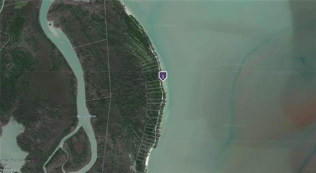 Cape Romano 2, Marco Island, FL 34145 (MLS #220026160) :: Clausen Properties, Inc.