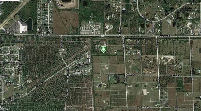 6071 George Rd, Punta Gorda, FL 33982 (MLS #220030114) :: #1 Real Estate Services