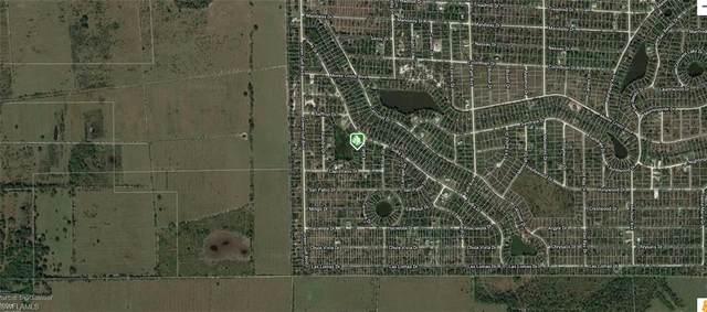 13339 Easel Dr, Punta Gorda, FL 33955 (#220032804) :: Caine Premier Properties