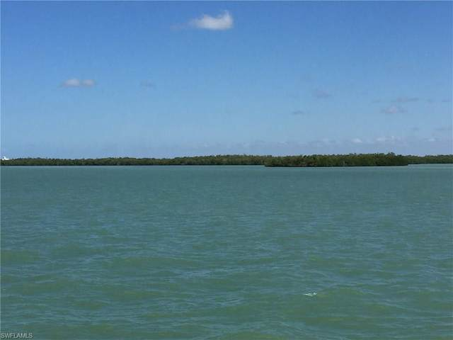 1290 Mulberry Ct, Marco Island, FL 34145 (#220035813) :: Southwest Florida R.E. Group Inc