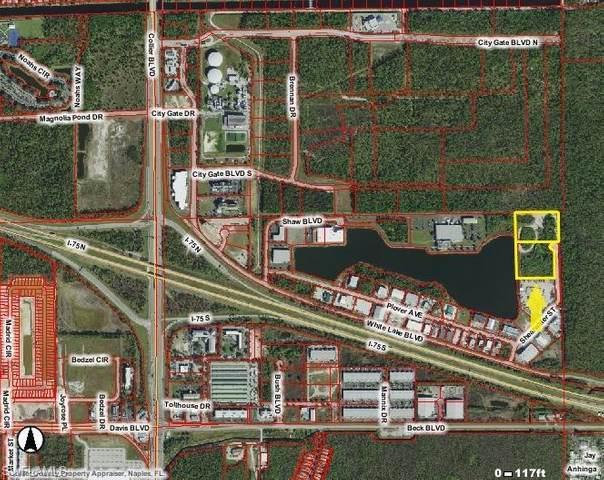 3485 Shearwater St, Naples, FL 34117 (#220035826) :: The Dellatorè Real Estate Group