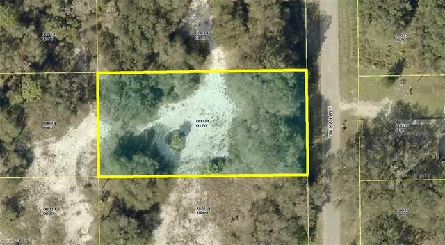 1809 Truman Ave, Lehigh Acres, FL 33972 (MLS #220037594) :: RE/MAX Realty Group