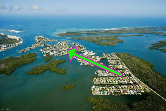 116 Hilo St E, Naples, FL 34113 (MLS #220043904) :: NextHome Advisors