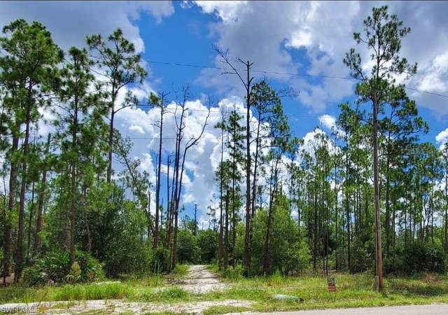 1102 Moore Ave, Lehigh Acres, FL 33972 (MLS #220048824) :: NextHome Advisors