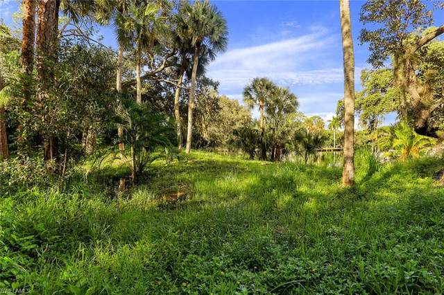 27280 Morgan Rd, Bonita Springs, FL 34135 (MLS #220059374) :: Waterfront Realty Group, INC.