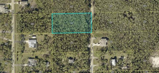 24300 Amarillo St, Bonita Springs, FL 34135 (MLS #220065522) :: Kris Asquith's Diamond Coastal Group