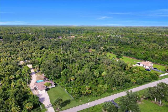 22nd Ave SE, Naples, FL 34117 (MLS #220067984) :: #1 Real Estate Services