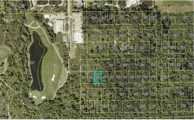 Rio Vista St, Estero, FL 33928 (MLS #220072498) :: Premier Home Experts