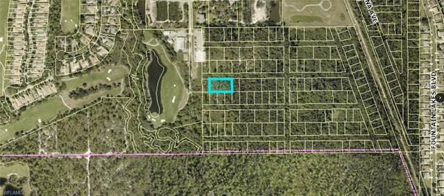 Santiago St, Estero, FL 33928 (MLS #220072516) :: Kris Asquith's Diamond Coastal Group