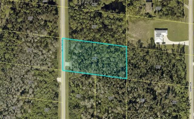 24411 Melaine Ln, Bonita Springs, FL 34135 (MLS #220075238) :: Domain Realty