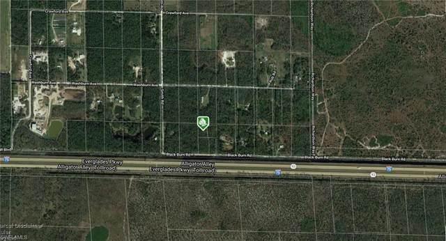 Blackburn Rd, Naples, FL 34117 (MLS #220077660) :: #1 Real Estate Services