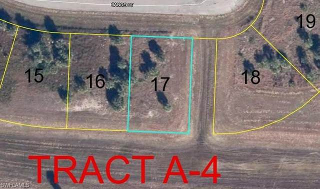Canoe Ct, Labelle, FL 33935 (MLS #220079153) :: Clausen Properties, Inc.