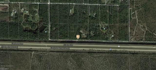 Blackburn Rd, Naples, FL 34117 (MLS #221000391) :: Clausen Properties, Inc.